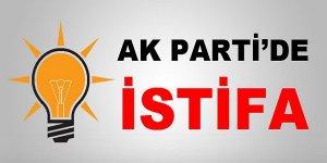 Hem başkanlıktan hem de AKP'den istifa