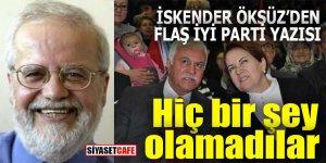 İskender Öksüz'den flaş İYİ Parti yazısı: Hiç bir şey olamadılar!
