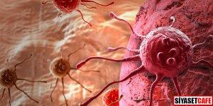 Ender görülen kanser türleri