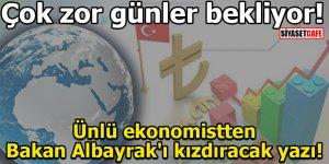Ünlü ekonomistten Bakan Albayrak'ı kızdıracak yazı!