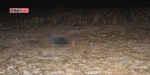 Konya'da korkunç olay! İki ceset bulundu