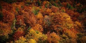 Sonbahar Bosna- Hersek'te Bir Başka Güzel