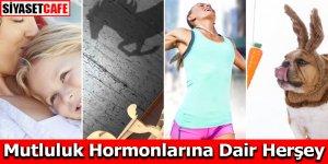 Mutluluk Hormonları Nelerdir? Nasıl Hissettirir?