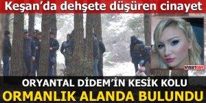 Oryantal Didem'in kesik kolu ormanda bulundu