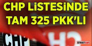 CHP listesinde tam 325 PKK'lı