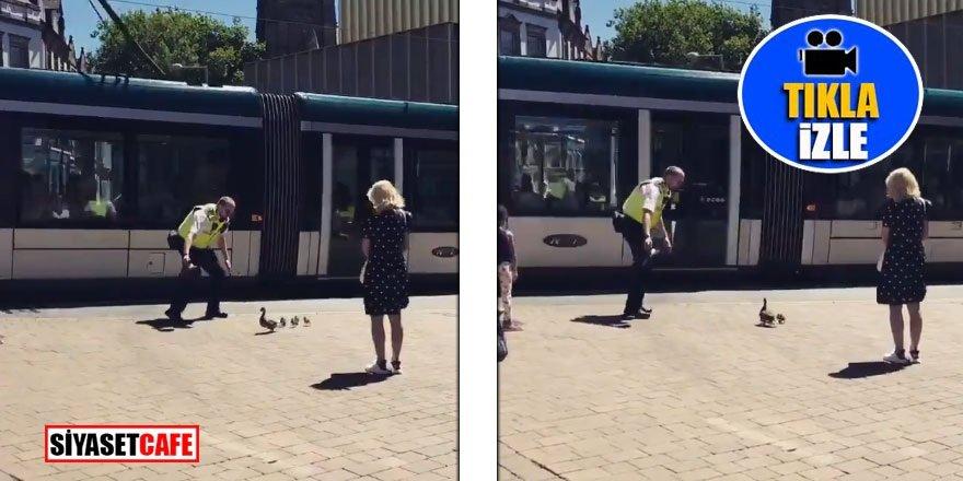 Polis ördeklere eskortluk yaptı