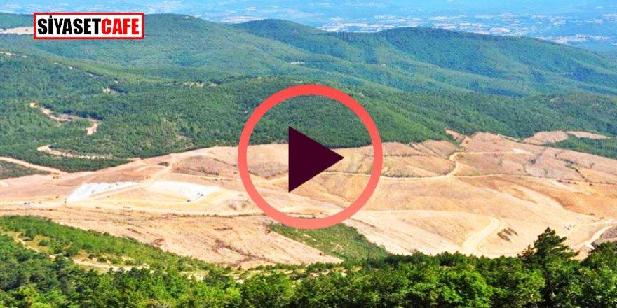 Kaz Dağları'nda neler oluyor?