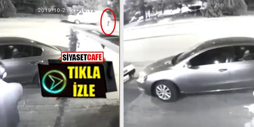 Ankara'da köpeğe tecavüz eden adam böyle yakalandı
