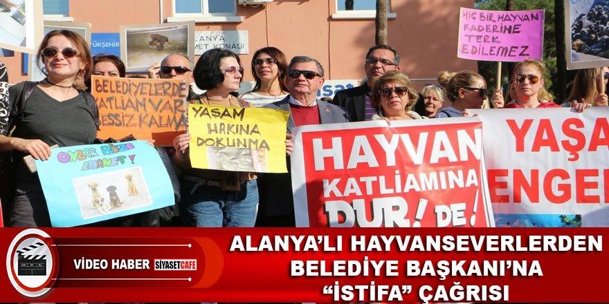 """Alanya'lı hayvanseverlerden Belediye Başkanı'na """"istifa"""" çağrısı"""