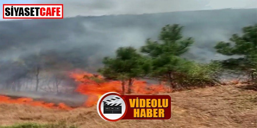 Aydos'da yangın paniği