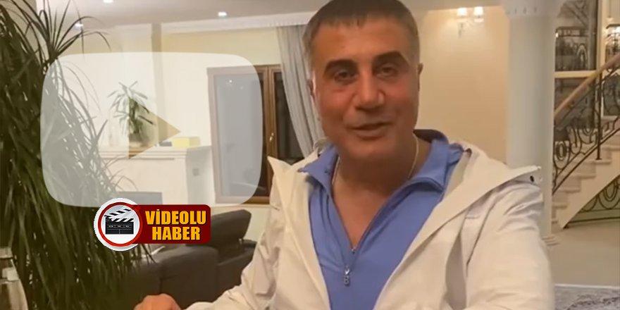Sedat Peker'den Berat Albayrak hakkında şok video!