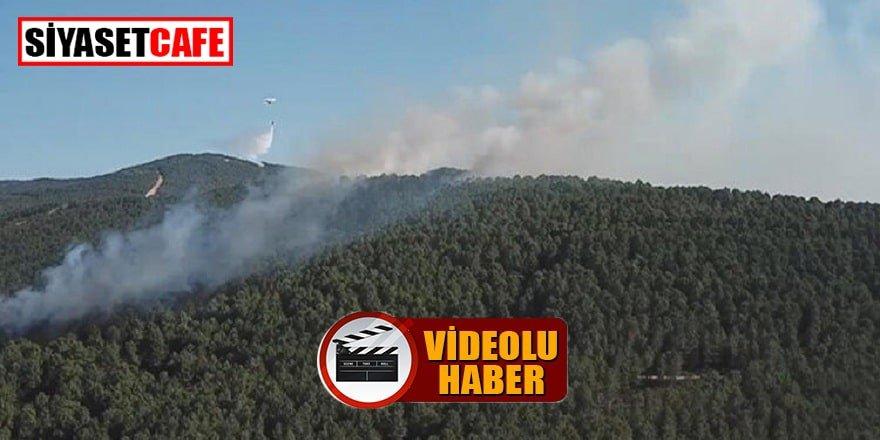 Aydos Ormanı'nda çıkan yangın kontrol altına alındı