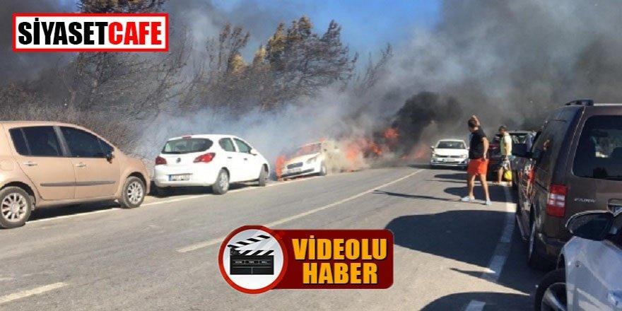 Otluk alanda çıkan yangın onlarca aracı küle çevirdi