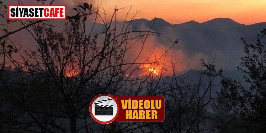 Adana Kozan'da büyük orman yangını