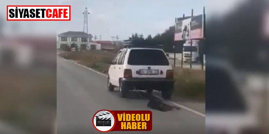 Köpeğe eziyet eden vicdansız sürücü, para cezasıyla kurtuldu