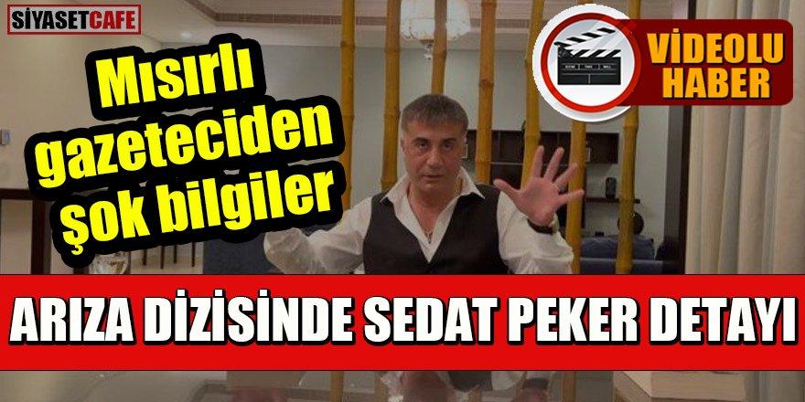 Arıza dizisinde Sedat Peker detayı