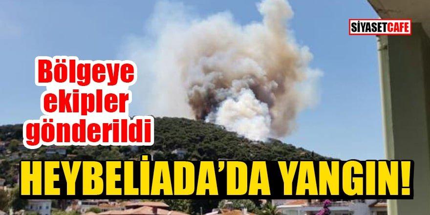 Heybeliada'da yangın! Bölgeye ekipler gönderildi