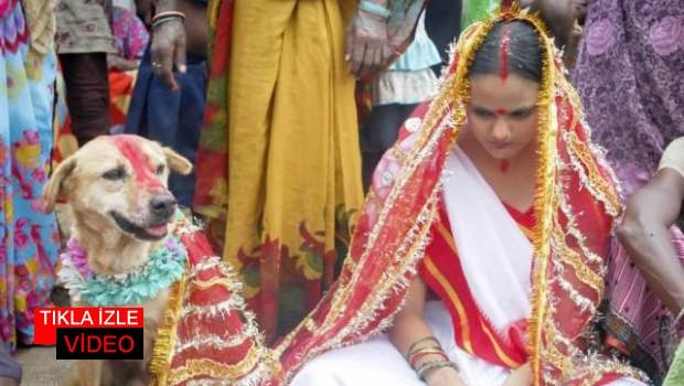 Hindistan'da Kızını Köpekle Evlendirdi